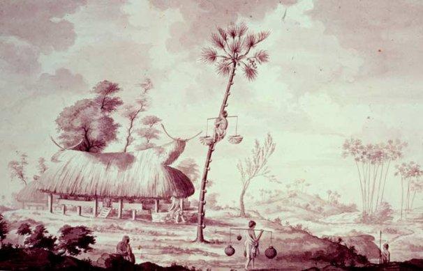 Rumah di Sabu pada saat kedatangan Endeavor. Gambar ini dibuat oleh Sydney Parkinson yang sekarang merupakan koleksi dari British Library.